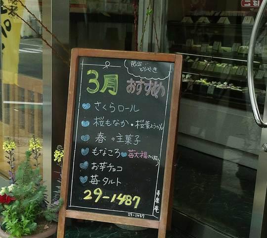 a21.jpg